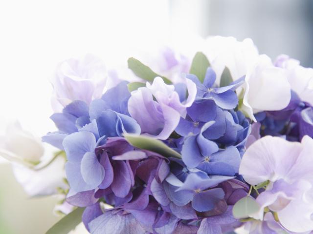大森結婚相談サロンの花