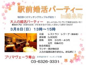 駅前婚活in錦糸町3月のチラシ