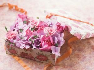 婚約のお祝い花
